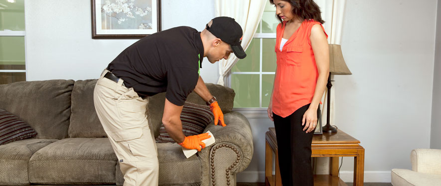 Chesterfield, VA carpet upholstery cleaning