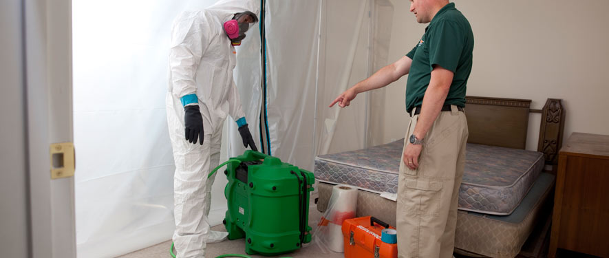 Chesterfield, VA mold removal process